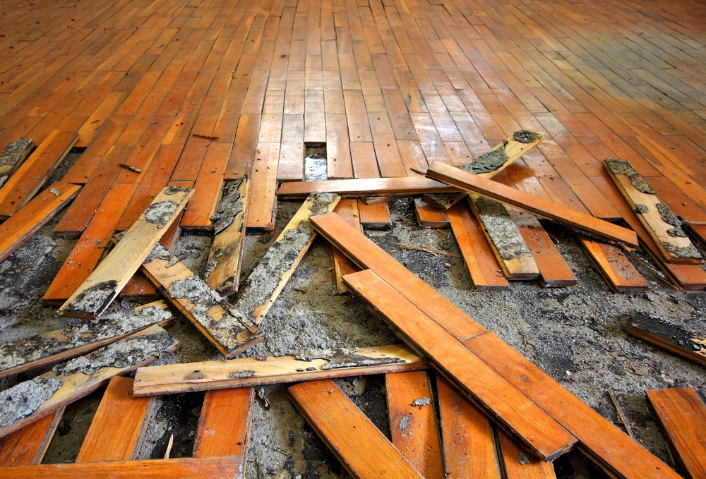Do You Need Water & Flood Damage Repair in Blossom Valley?